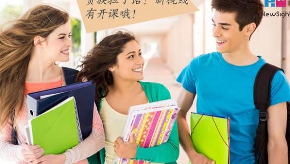 南京新视线拉丁语VIP一对一定制课程